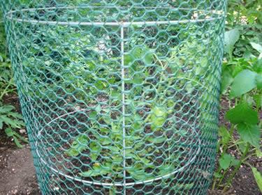 Heavy Duty Rigid Plastic Tomato Cages Defense Against